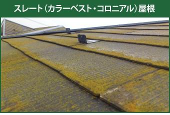 藻の生えたスレート(カラーベスト・コロニアル)屋根