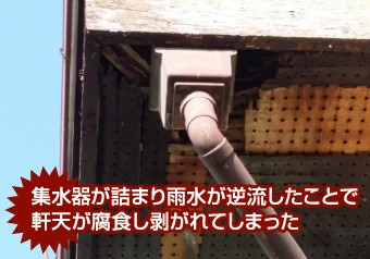 集水器の詰まりが原因で腐食し剥がれた軒天